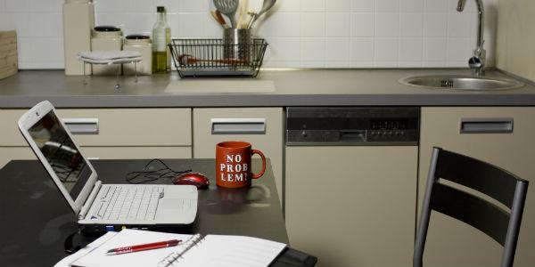 Thuiswerken: No problem of big problem?